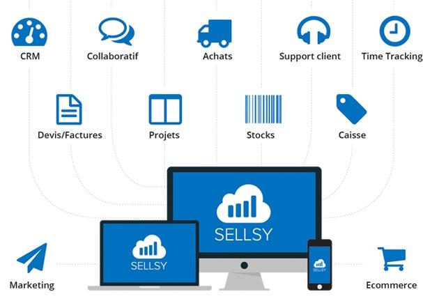 sellsy_site_web1